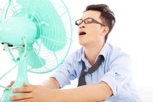 best-cooling-fan