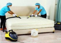 remove-bed-bugs