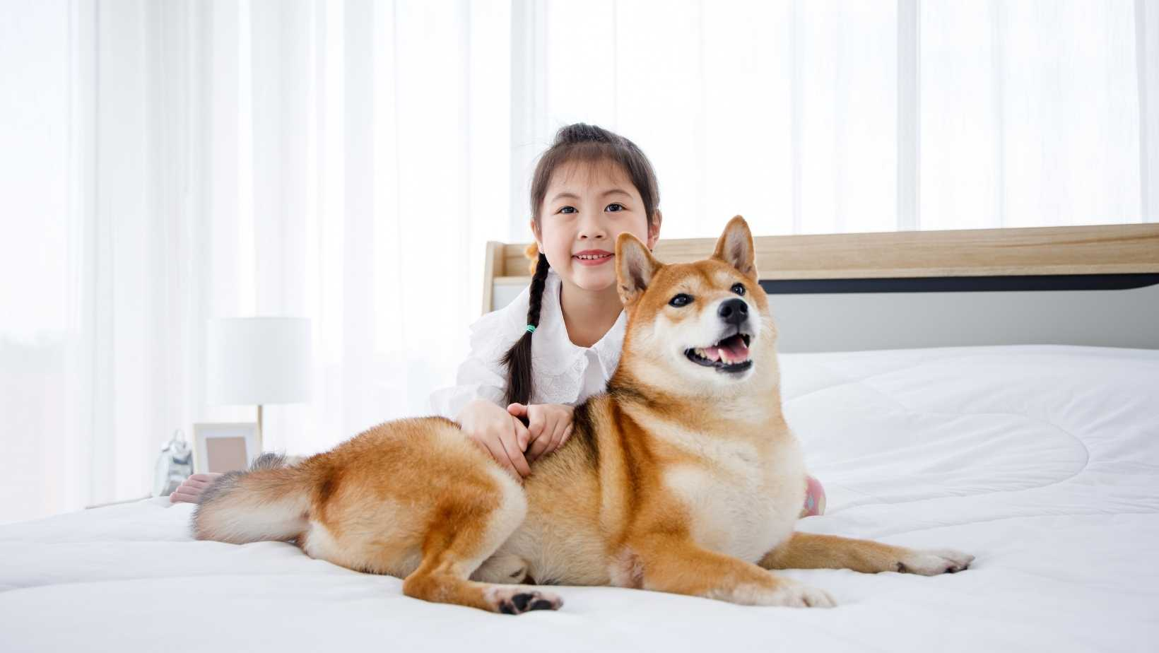 does a mattress protector prevent dust mites